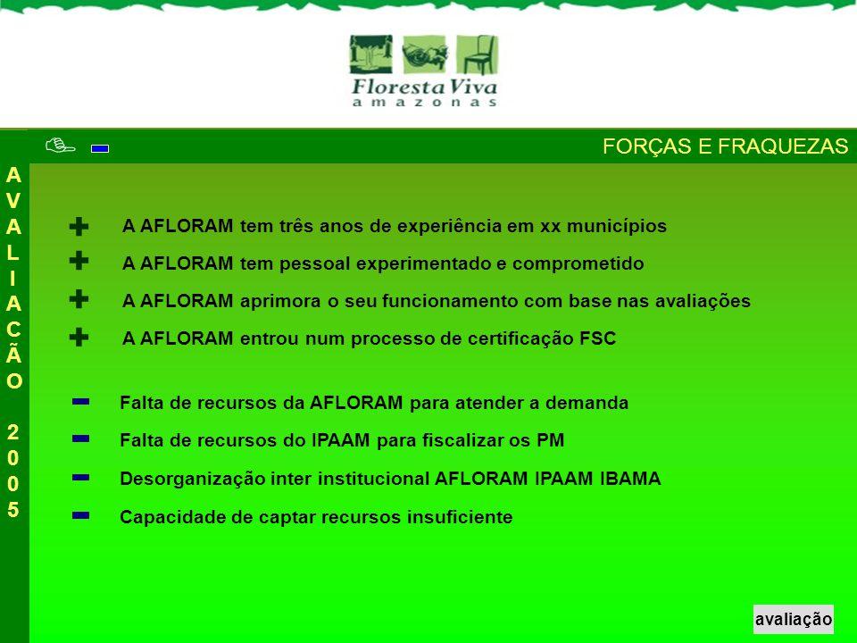  + + + + FORÇAS E FRAQUEZAS AVALIACÃO 2005