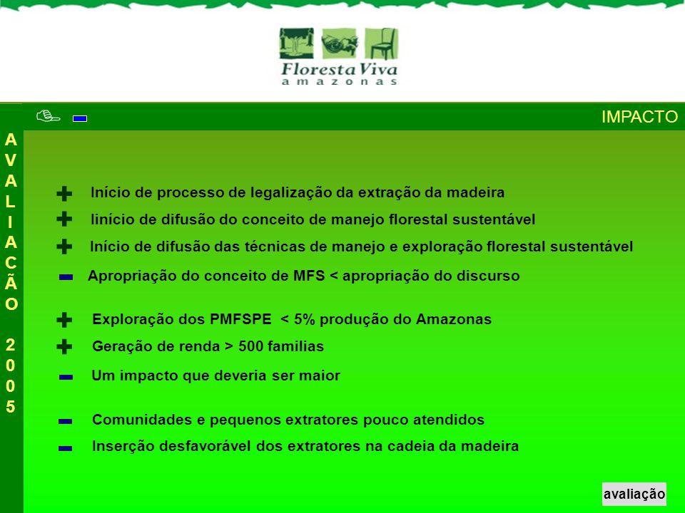  + + + + + IMPACTO AVALIACÃO 2005
