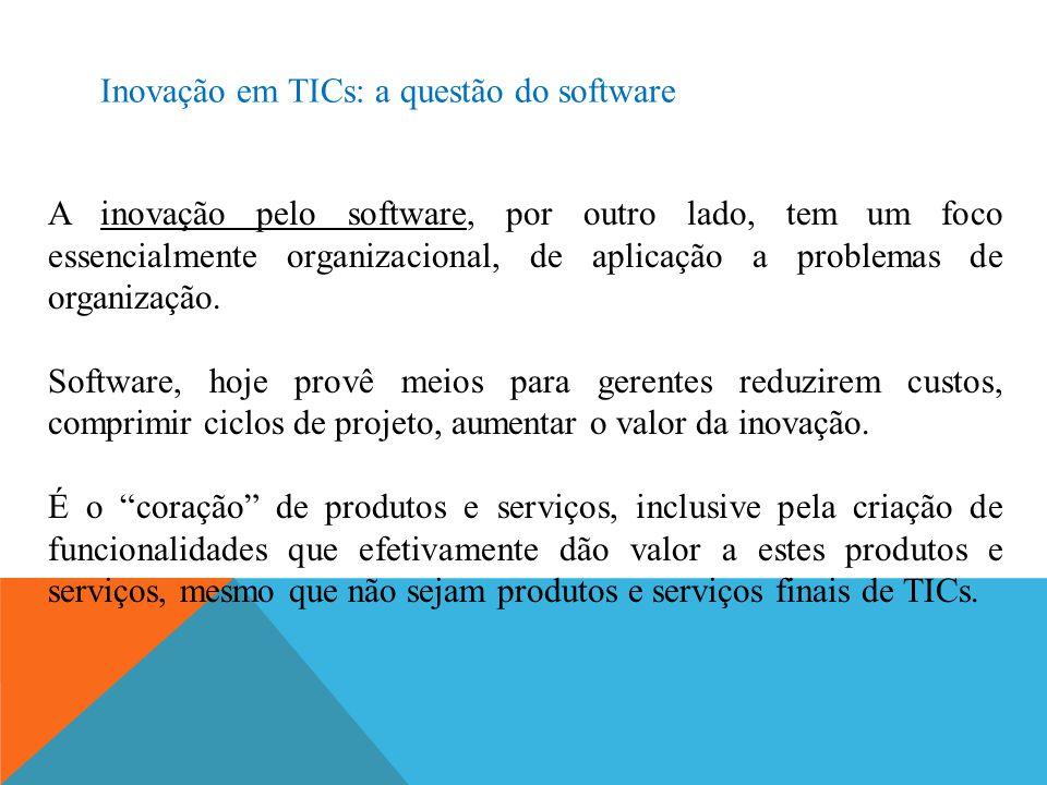 Inovação em TICs: a questão do software