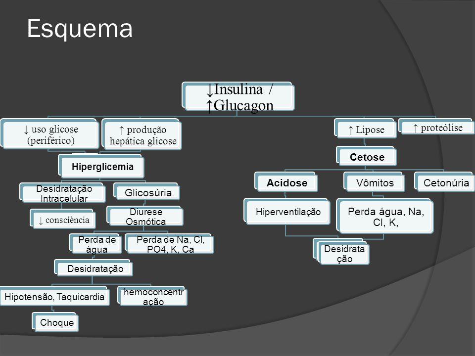 Esquema ↓Insulina / ↑Glucagon ↓ uso glicose (periférico)