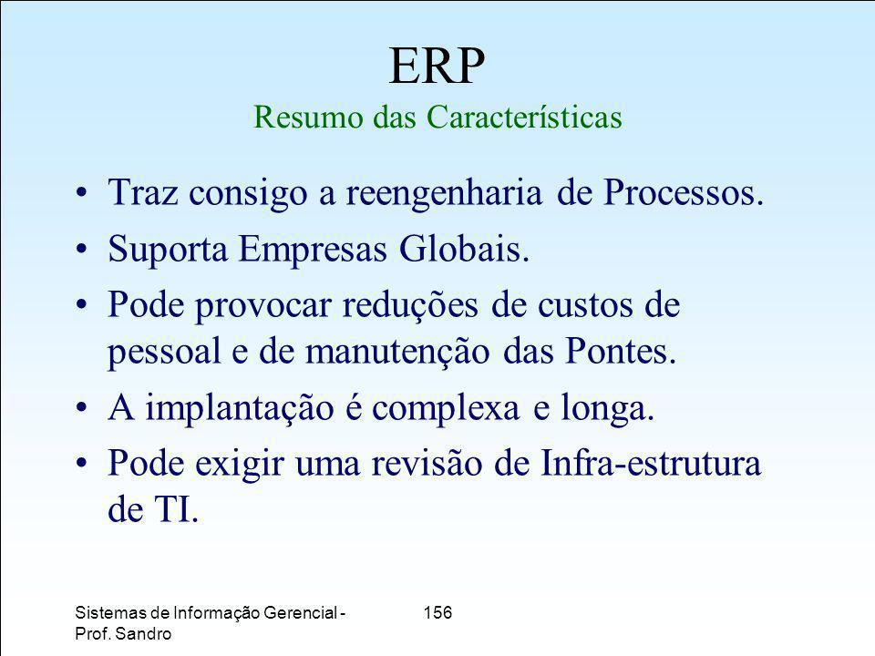 ERP Resumo das Características