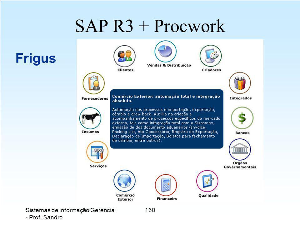 SAP R3 + Procwork Frigus Sistemas de Informação Gerencial - Prof. Sandro