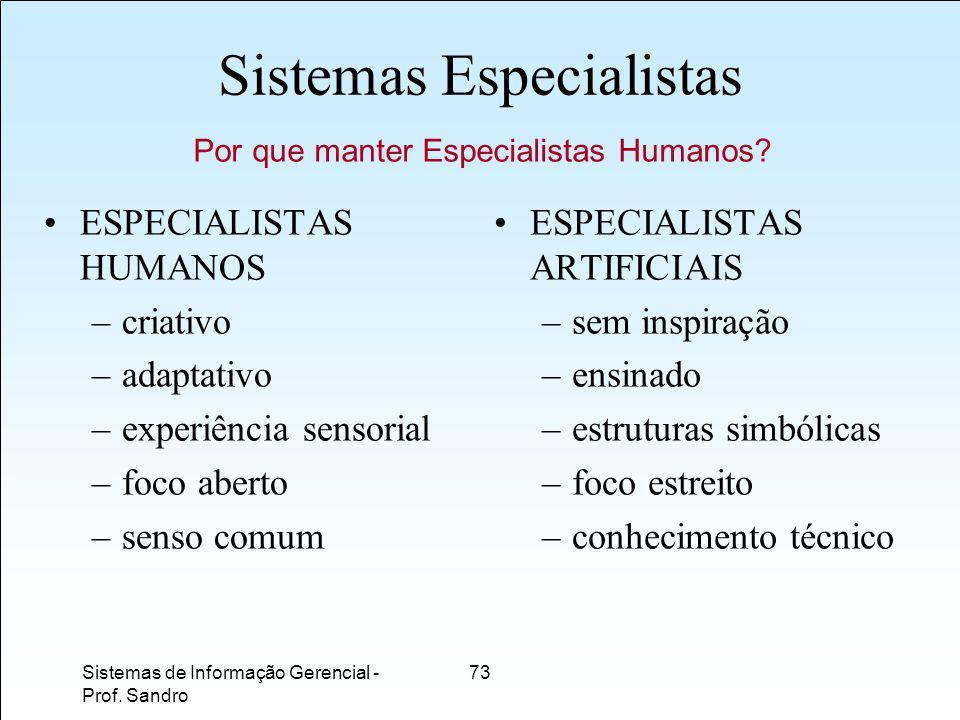 Sistemas Especialistas