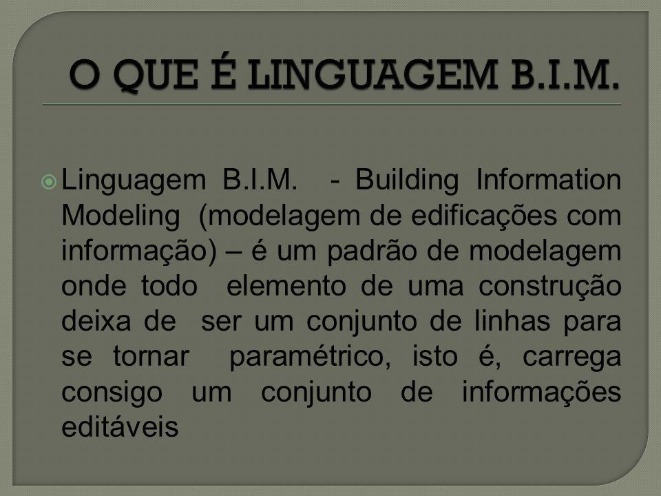 O QUE É LINGUAGEM B.I.M.