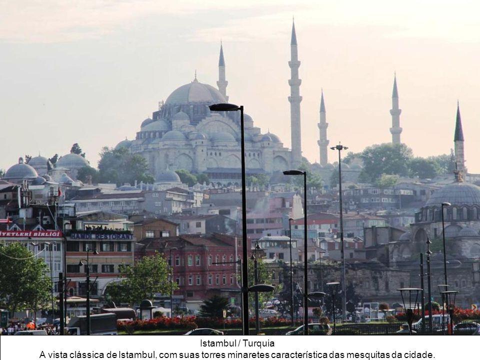 Istambul / Turquia A vista clássica de Istambul, com suas torres minaretes característica das mesquitas da cidade.