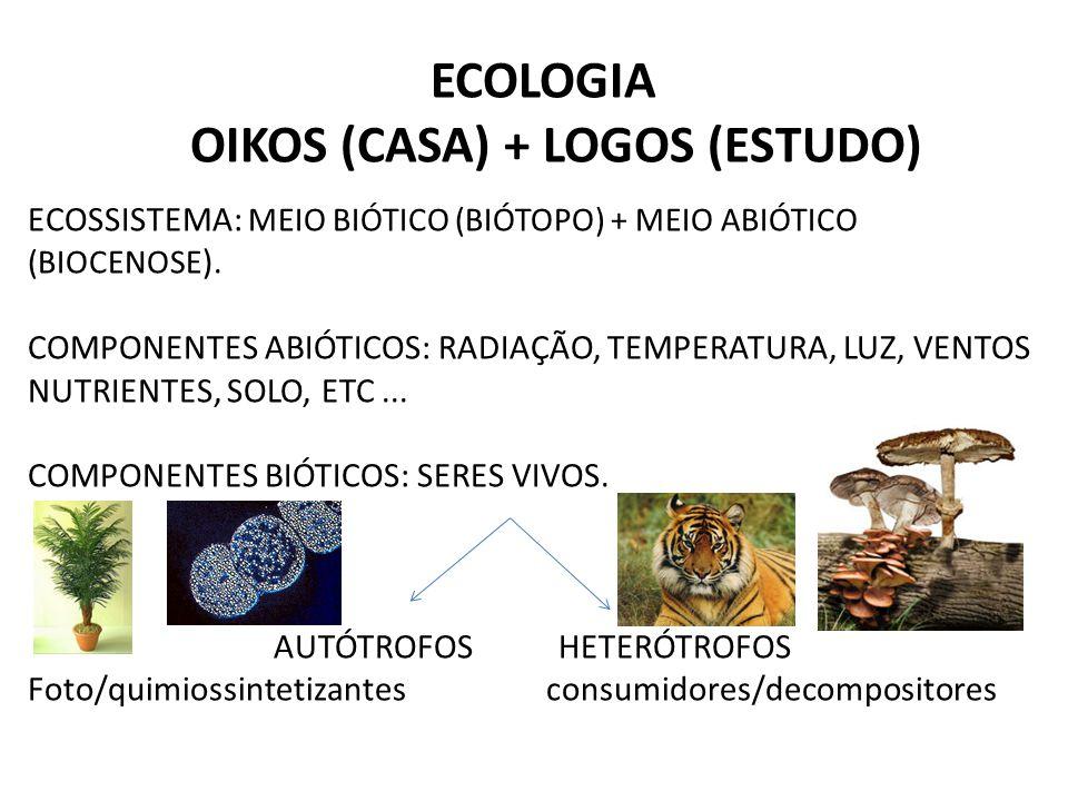 OIKOS (CASA) + LOGOS (ESTUDO)