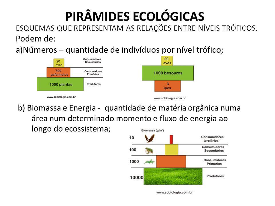 PIRÂMIDES ECOLÓGICAS Podem de:
