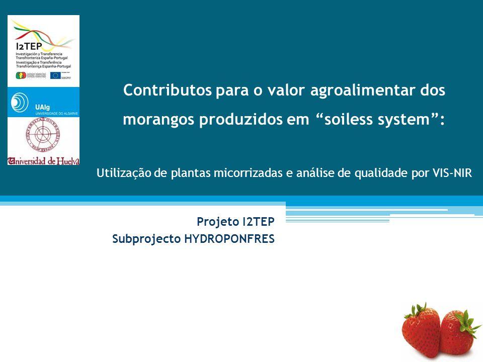 Contributos para o valor agroalimentar dos morangos produzidos em soiless system : Utilização de plantas micorrizadas e análise de qualidade por VIS-NIR