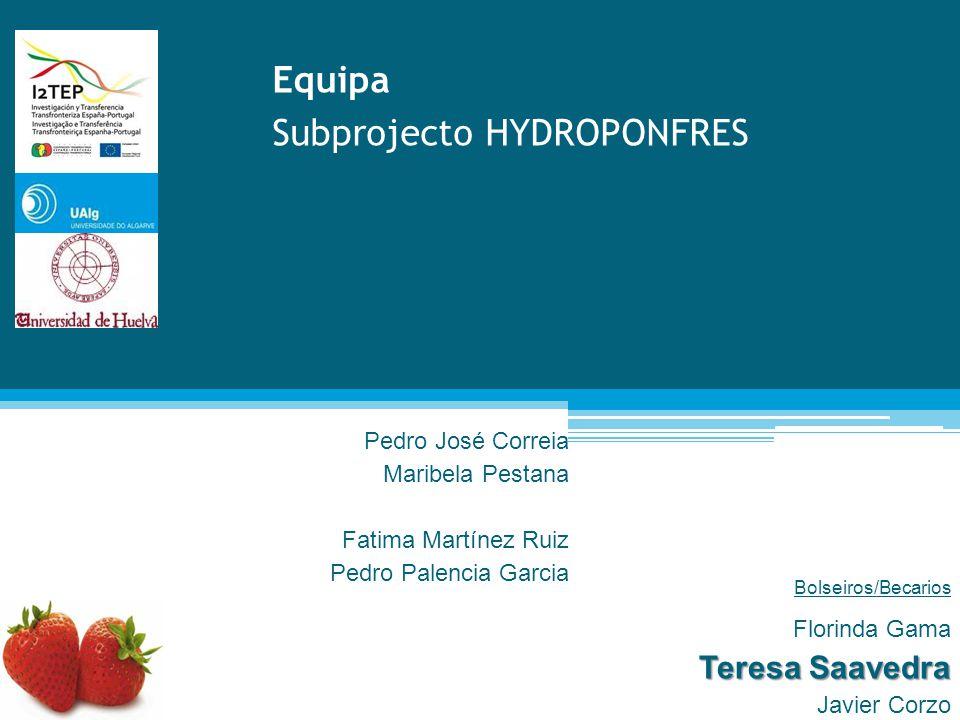 Subprojecto HYDROPONFRES