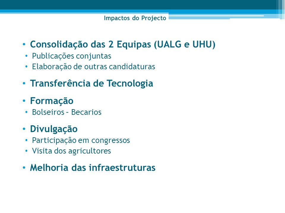 Consolidação das 2 Equipas (UALG e UHU)