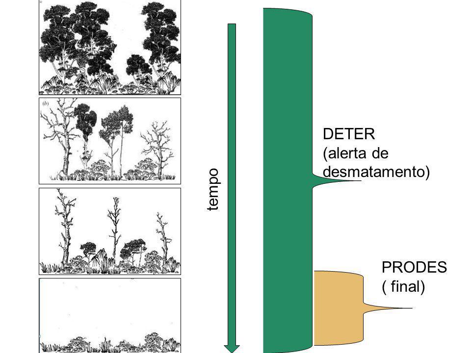 DETER (alerta de desmatamento) tempo PRODES ( final) Floresta