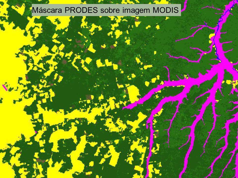 Máscara PRODES sobre imagem MODIS