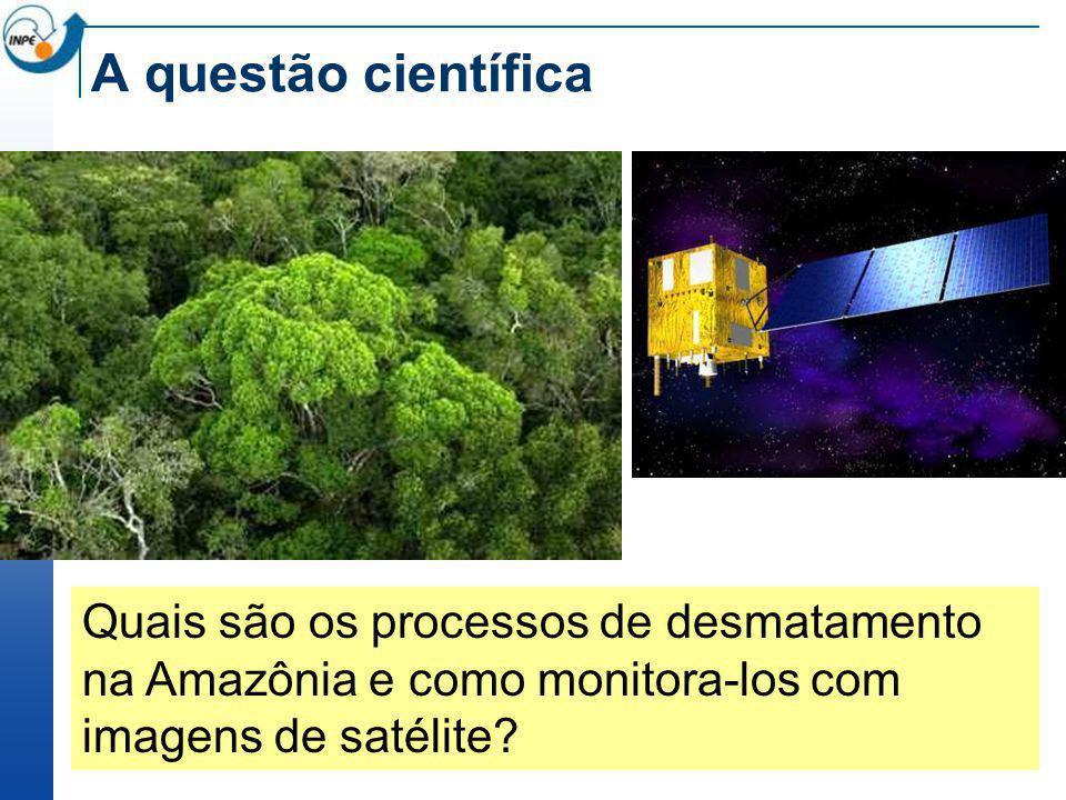 A questão científica Quais são os processos de desmatamento na Amazônia e como monitora-los com imagens de satélite