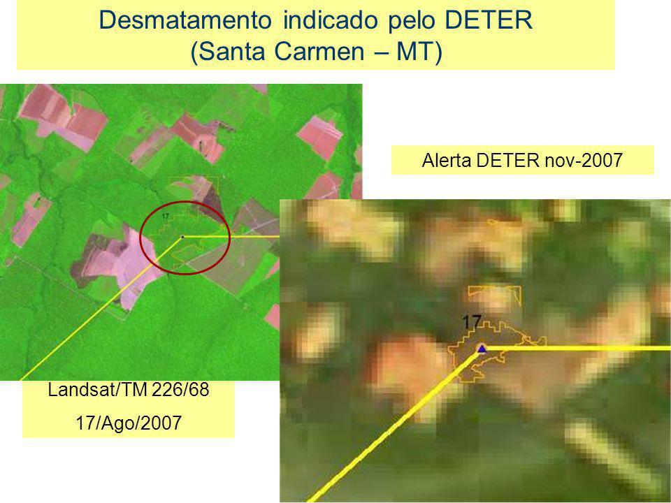 Desmatamento indicado pelo DETER