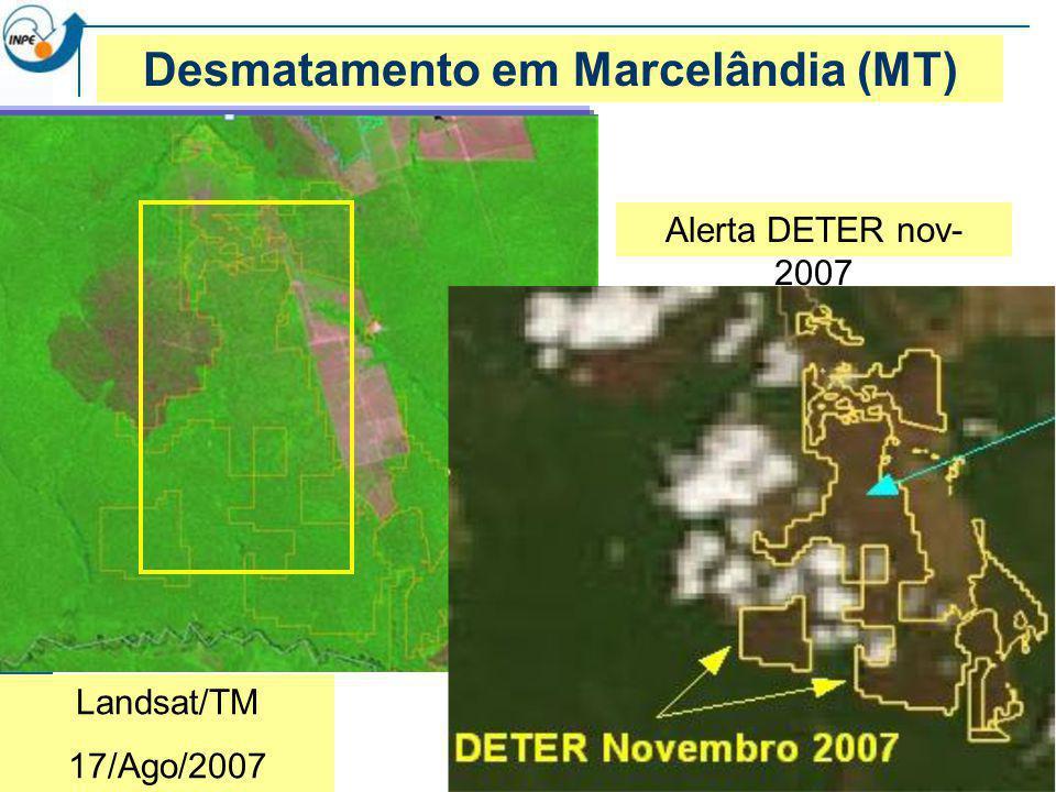 Desmatamento em Marcelândia (MT)