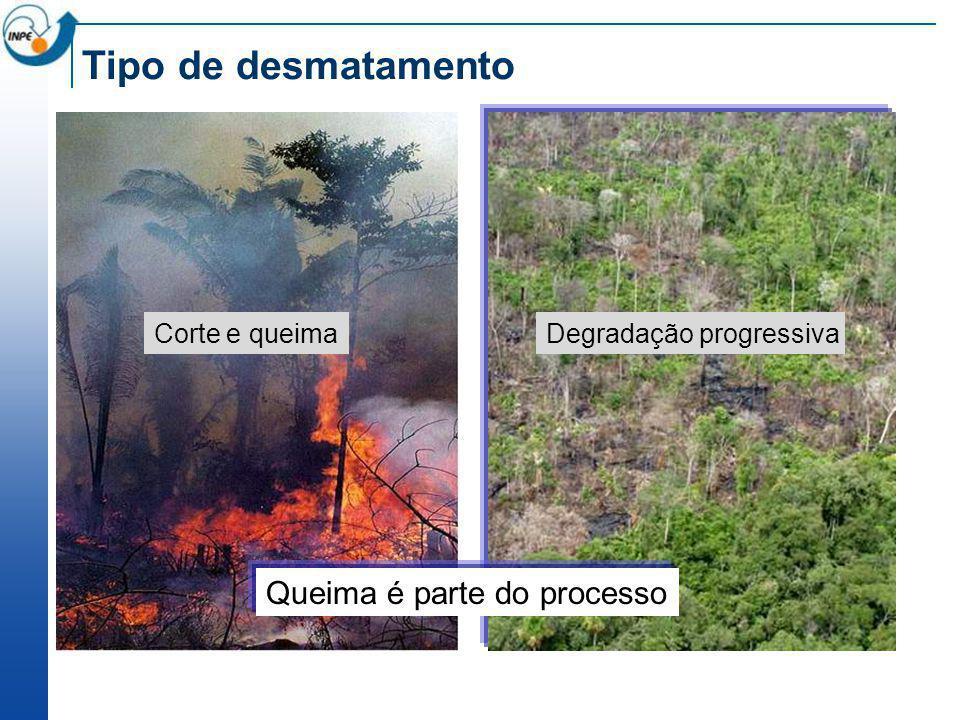 Tipo de desmatamento Queima é parte do processo Corte e queima