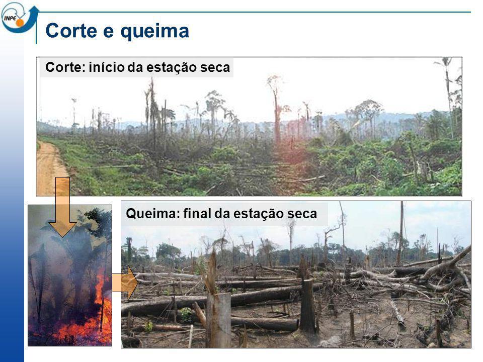 Corte e queima Corte: início da estação seca