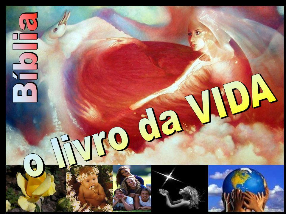 Bíblia o livro da VIDA