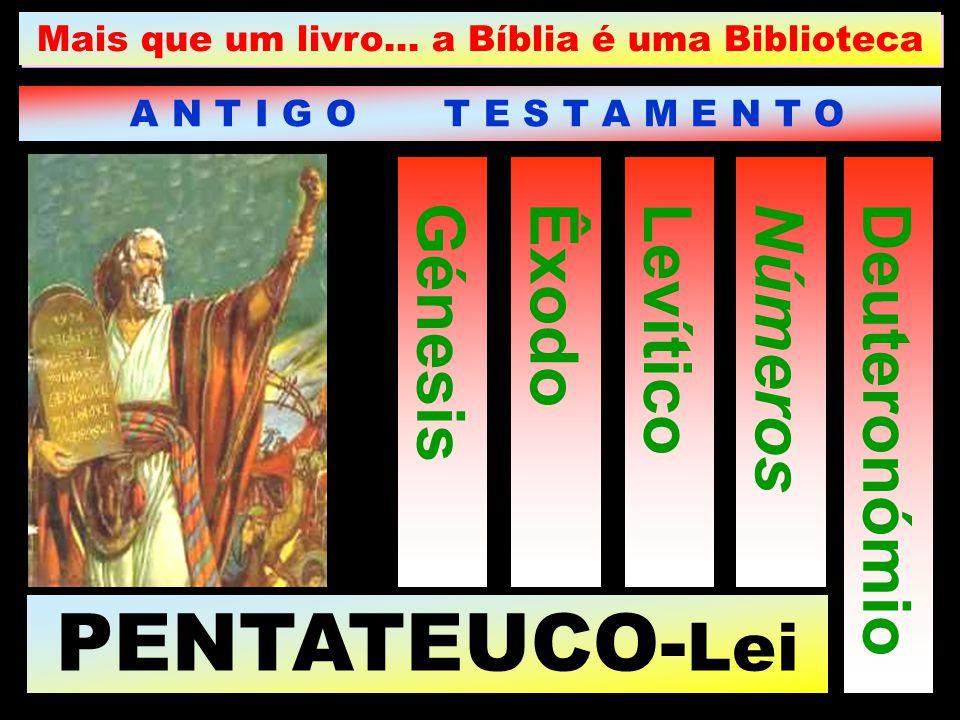 Mais que um livro… a Bíblia é uma Biblioteca