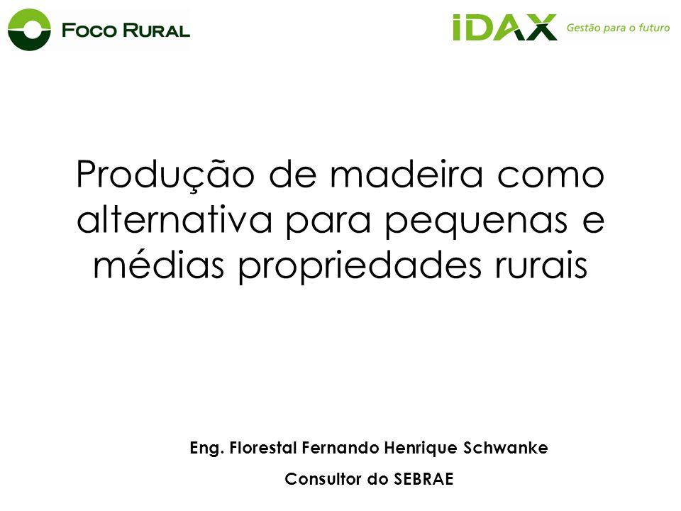 Eng. Florestal Fernando Henrique Schwanke