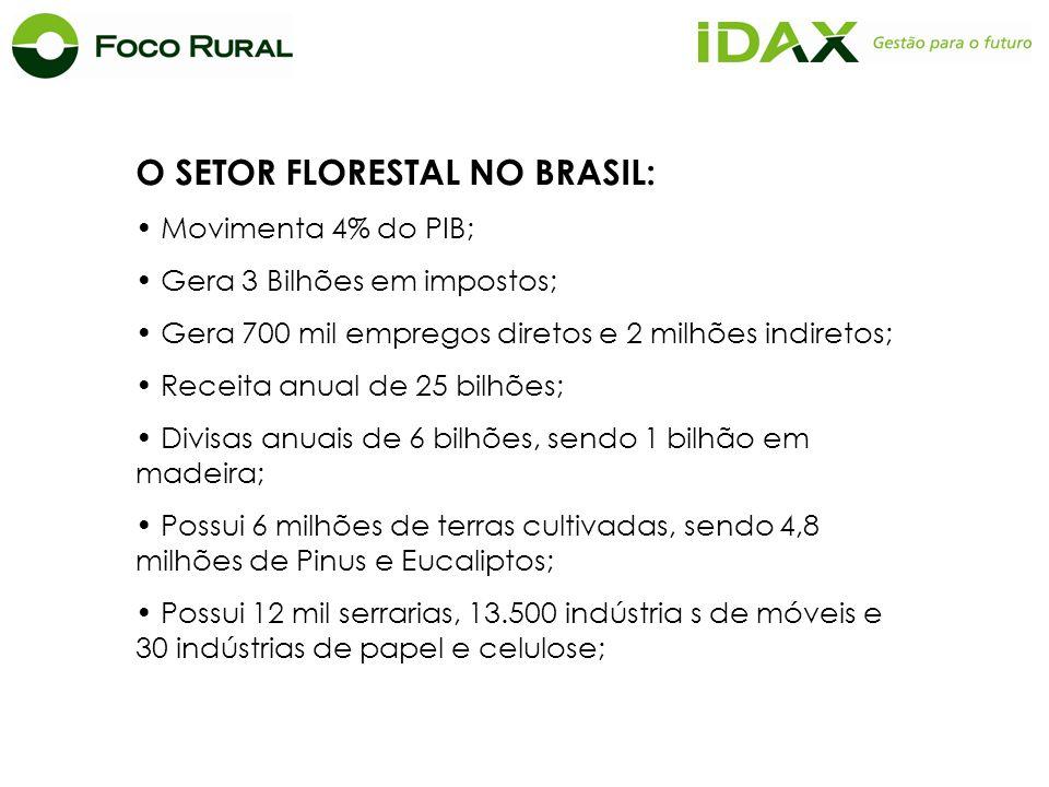 O SETOR FLORESTAL NO BRASIL: