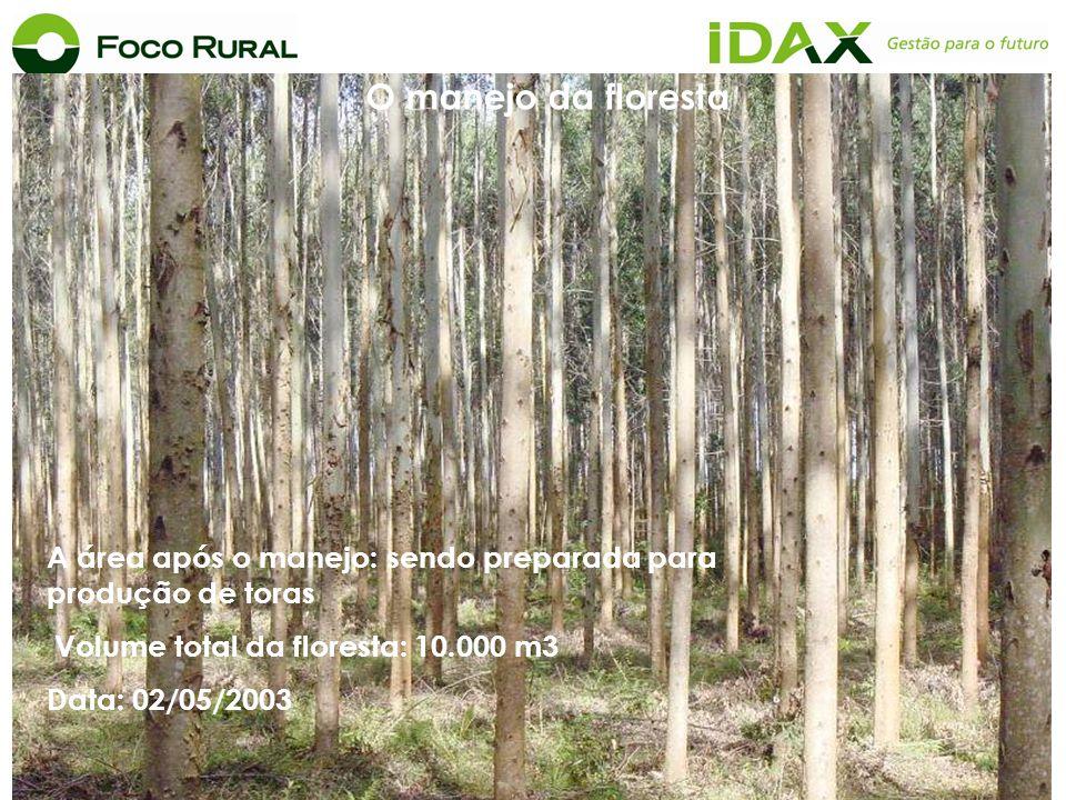 O manejo da floresta A área após o manejo: sendo preparada para produção de toras. Volume total da floresta: 10.000 m3.