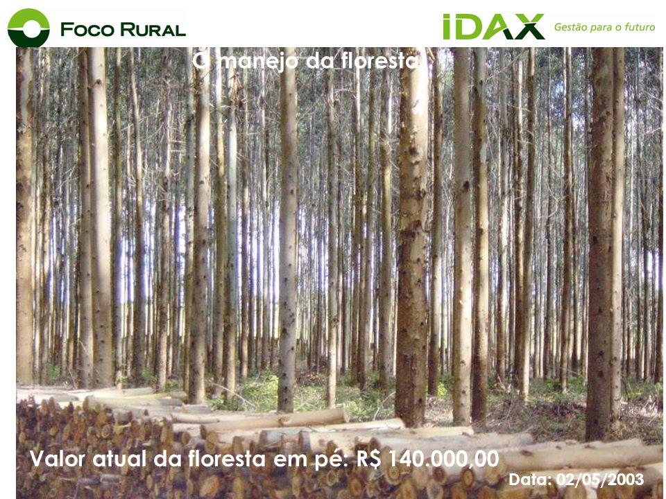 Valor atual da floresta em pé: R$ 140.000,00