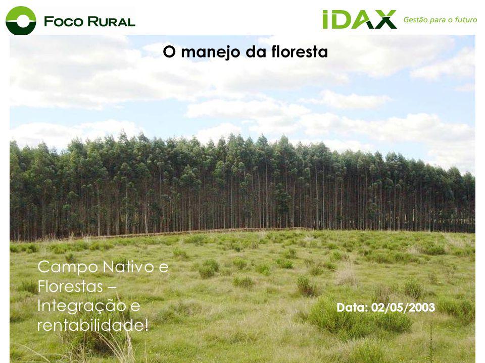 Campo Nativo e Florestas – Integração e rentabilidade!