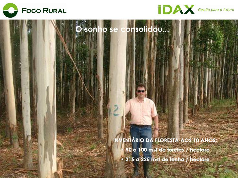 INVENTÁRIO DA FLORESTA AOS 10 ANOS: 90 a 100 mst de toretes / hectare
