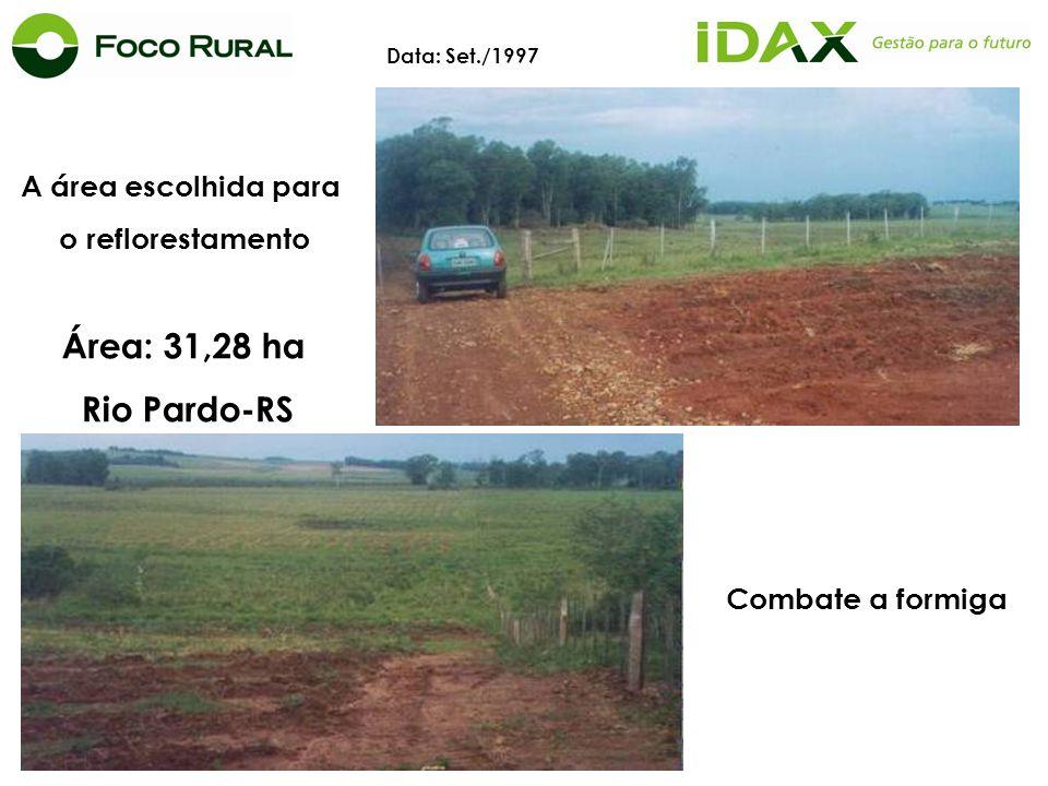 Área: 31,28 ha Rio Pardo-RS A área escolhida para o reflorestamento