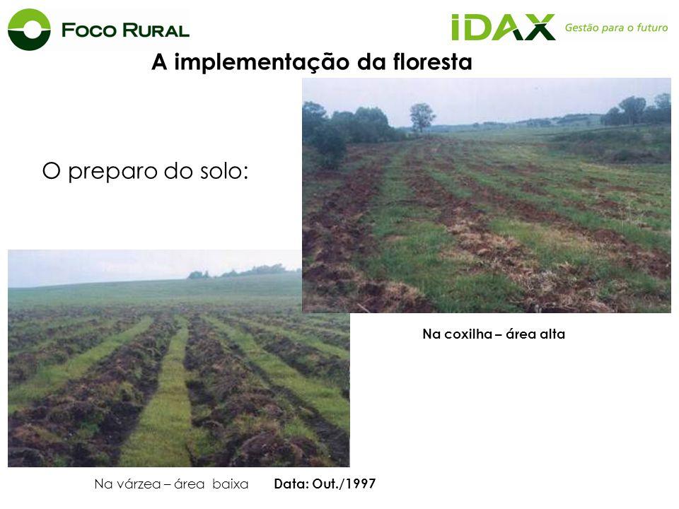 A implementação da floresta