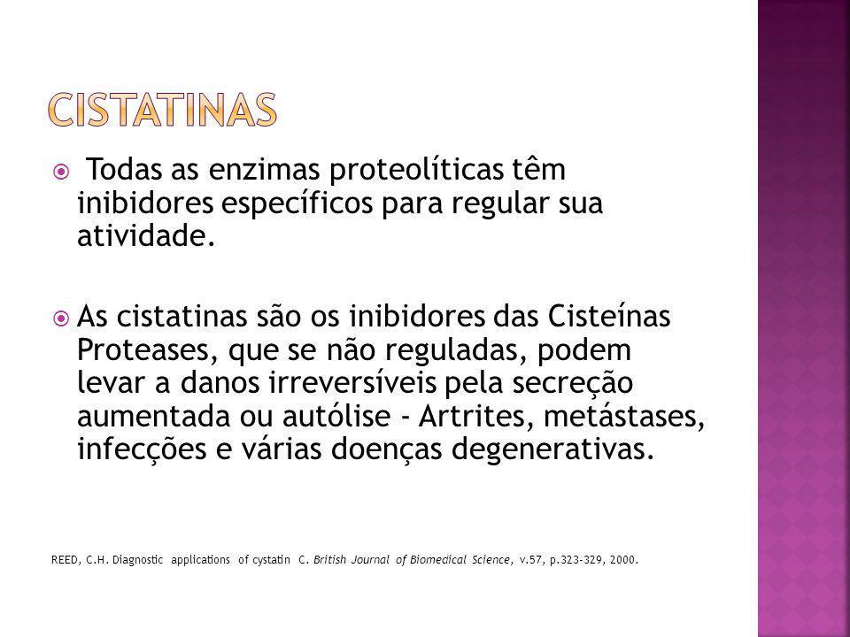 cistatinas Todas as enzimas proteolíticas têm inibidores específicos para regular sua atividade.