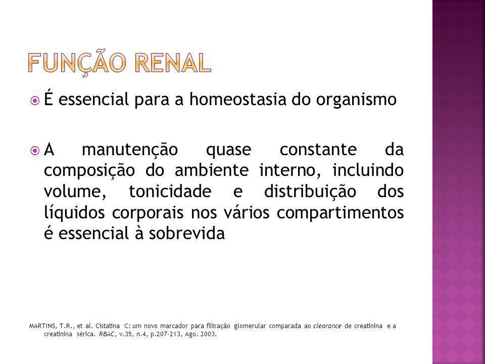 Função renal É essencial para a homeostasia do organismo