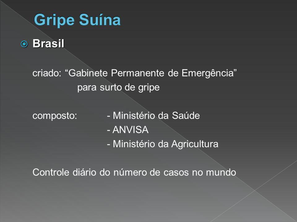 Gripe Suína Brasil criado: Gabinete Permanente de Emergência