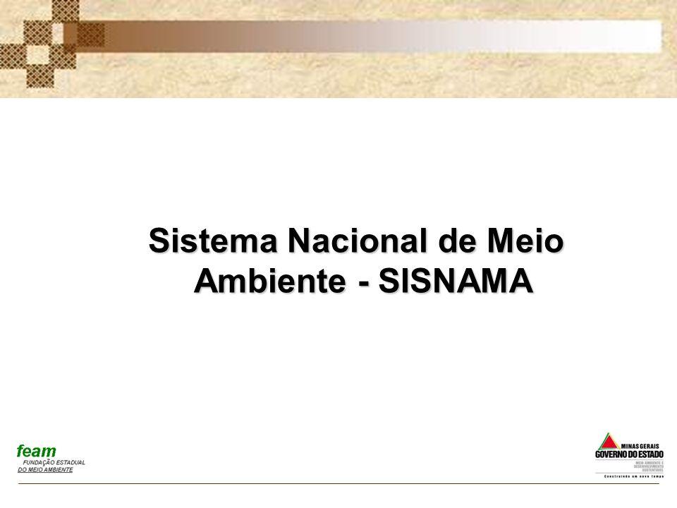 Sistema Nacional de Meio Ambiente - SISNAMA