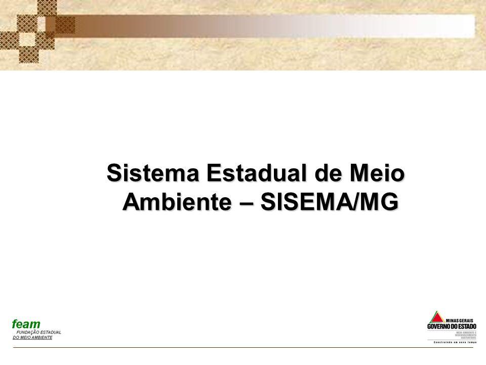 Sistema Estadual de Meio Ambiente – SISEMA/MG