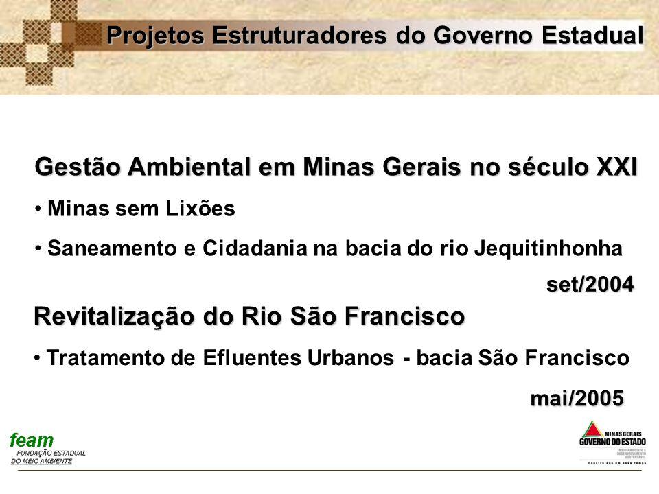 Gestão Ambiental em Minas Gerais no século XXI