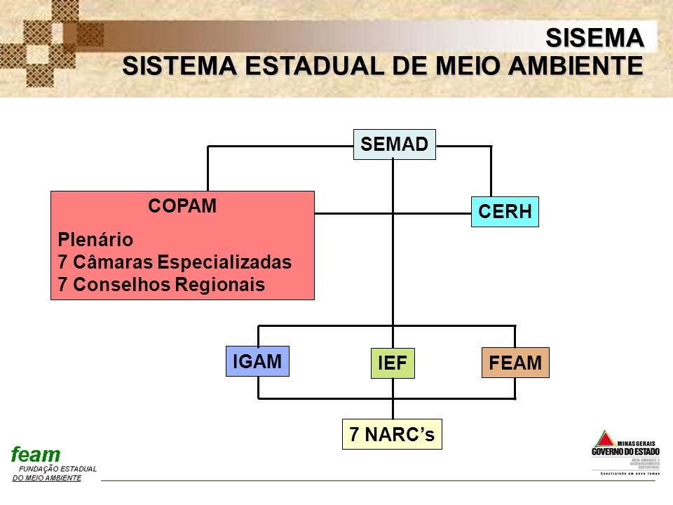 SISTEMA ESTADUAL DE MEIO AMBIENTE