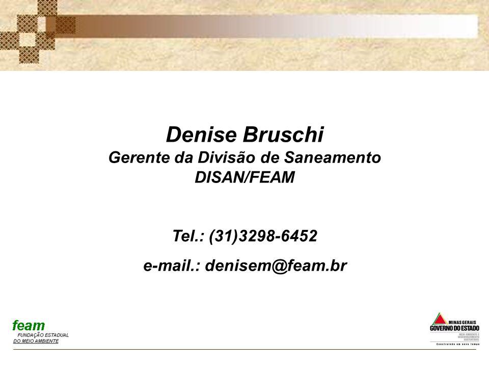 Denise Bruschi Gerente da Divisão de Saneamento DISAN/FEAM