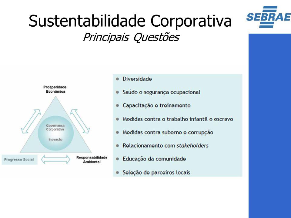 Sustentabilidade Corporativa Principais Questões