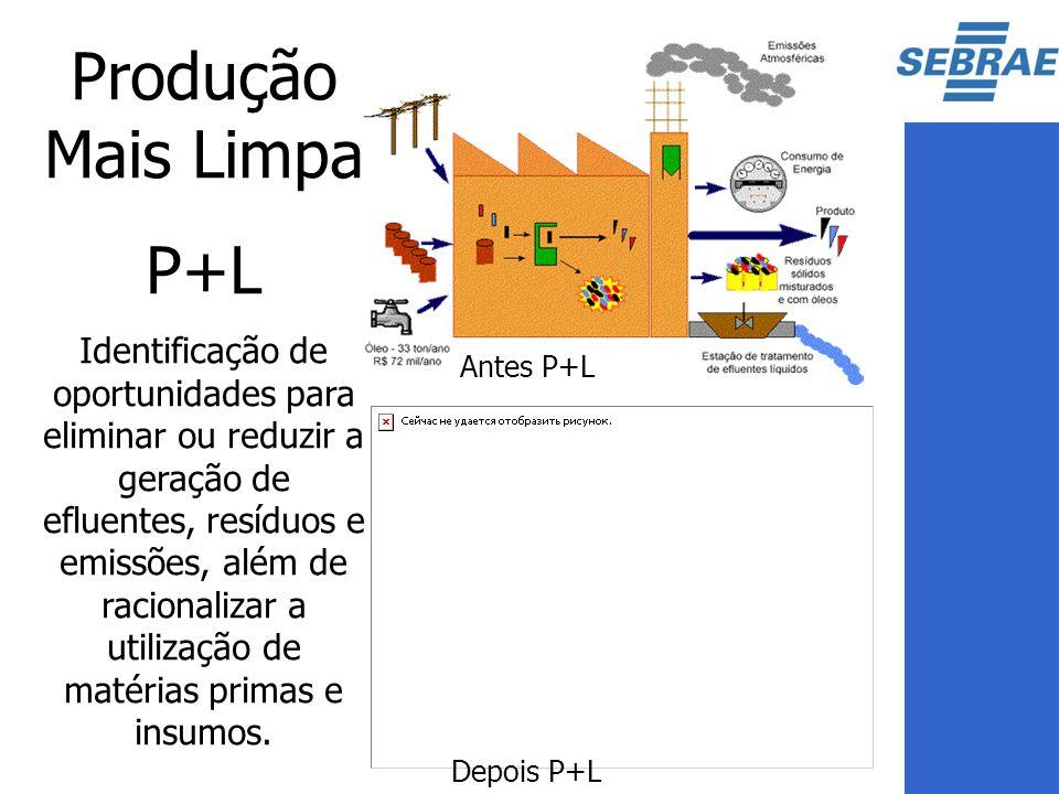 Produção Mais Limpa P+L