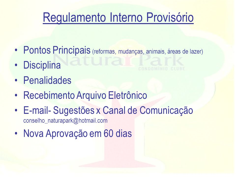 Regulamento Interno Provisório