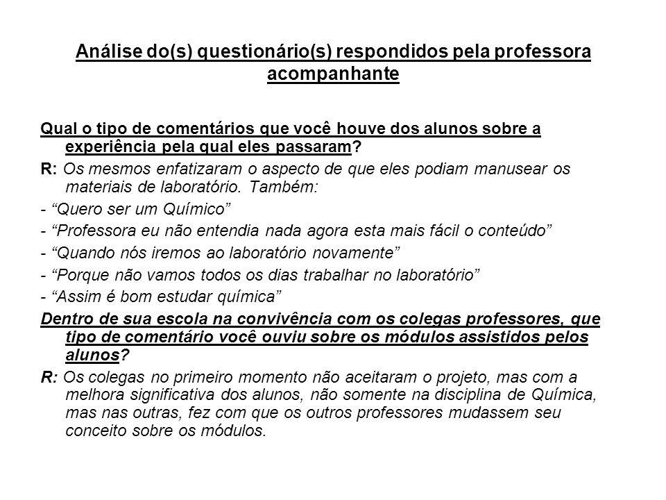 Análise do(s) questionário(s) respondidos pela professora acompanhante