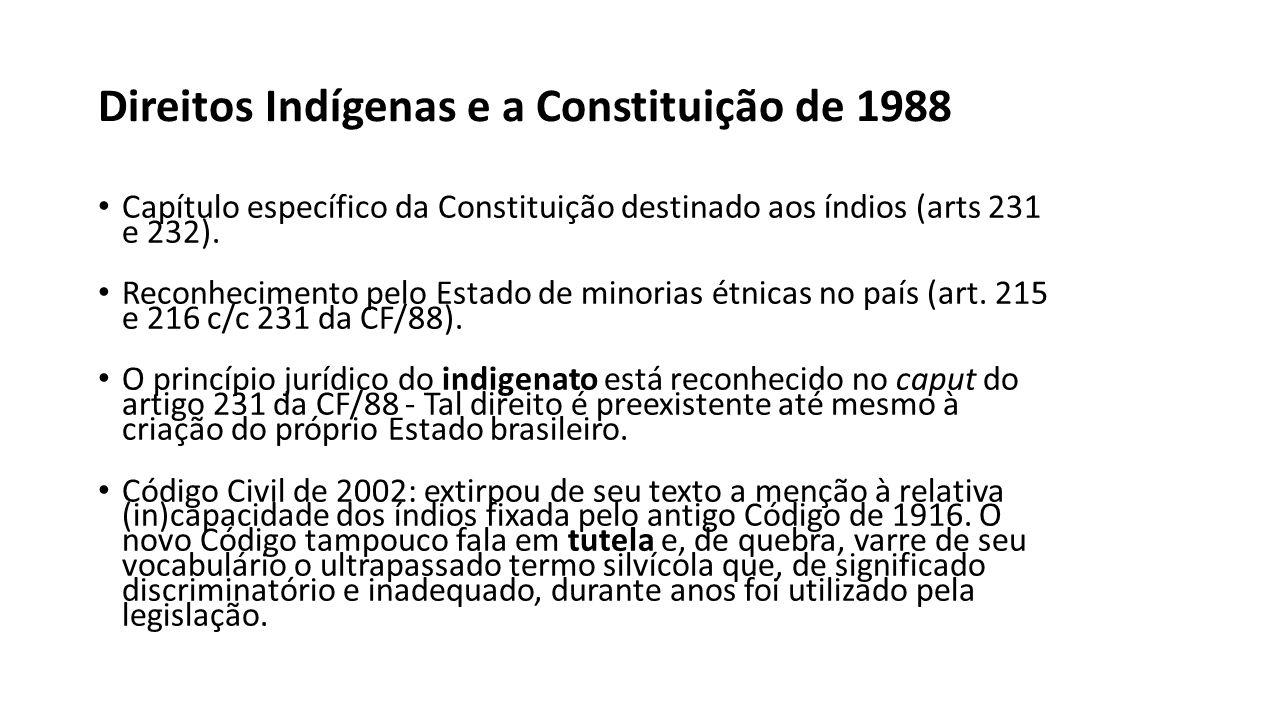 Direitos Indígenas e a Constituição de 1988