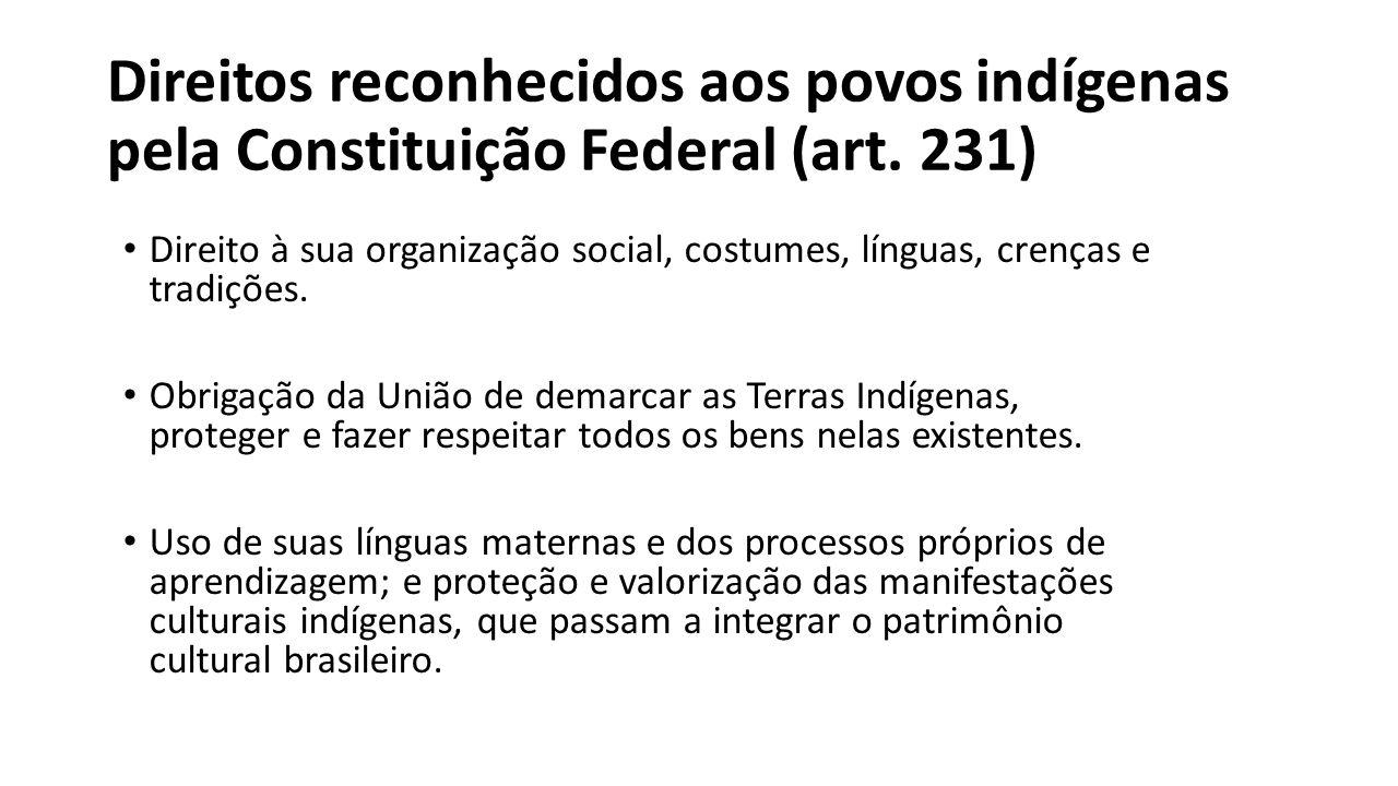 Direitos reconhecidos aos povos indígenas pela Constituição Federal (art. 231)