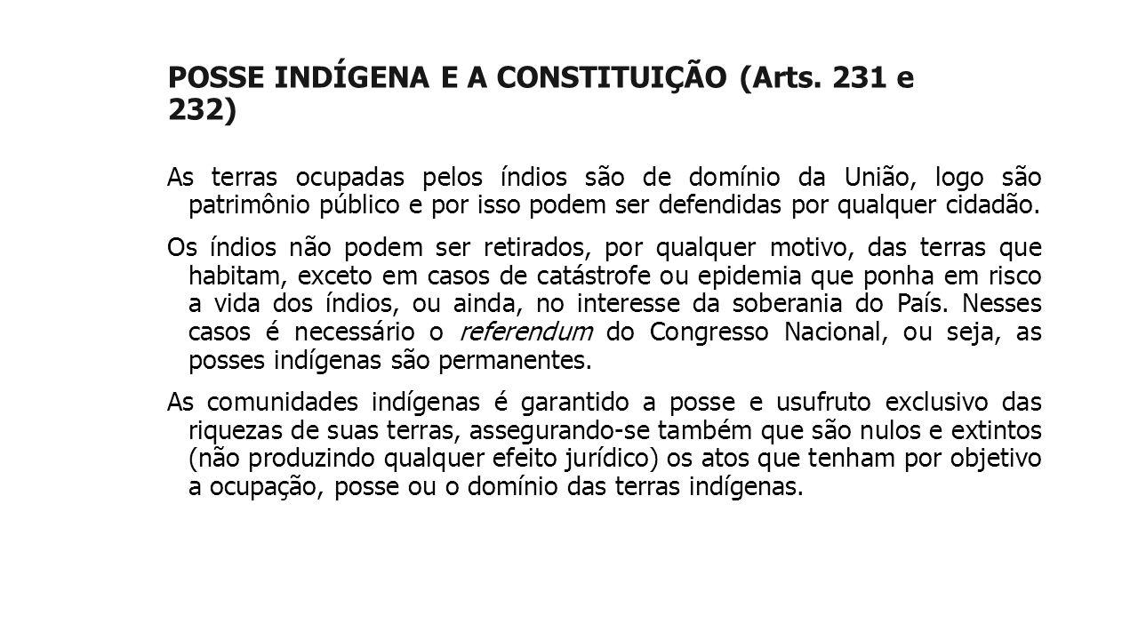 POSSE INDÍGENA E A CONSTITUIÇÃO (Arts. 231 e 232)