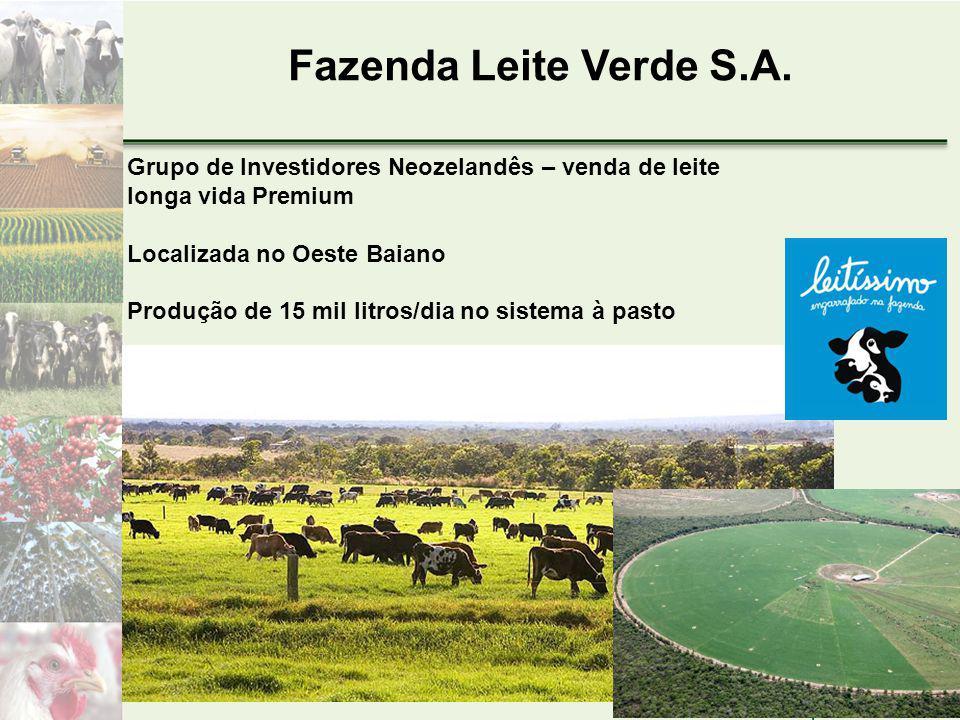 Fazenda Leite Verde S.A. Grupo de Investidores Neozelandês – venda de leite longa vida Premium. Localizada no Oeste Baiano.