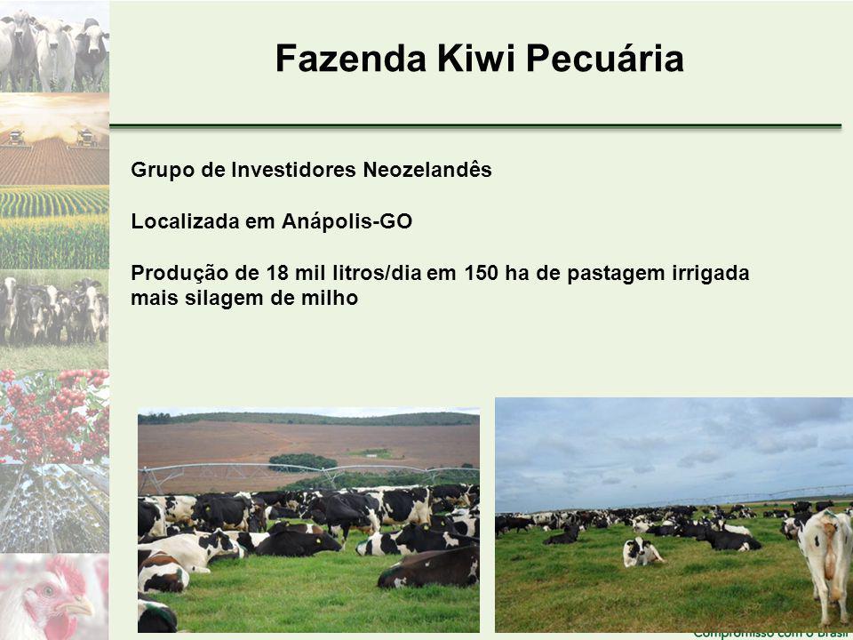 Fazenda Kiwi Pecuária Grupo de Investidores Neozelandês