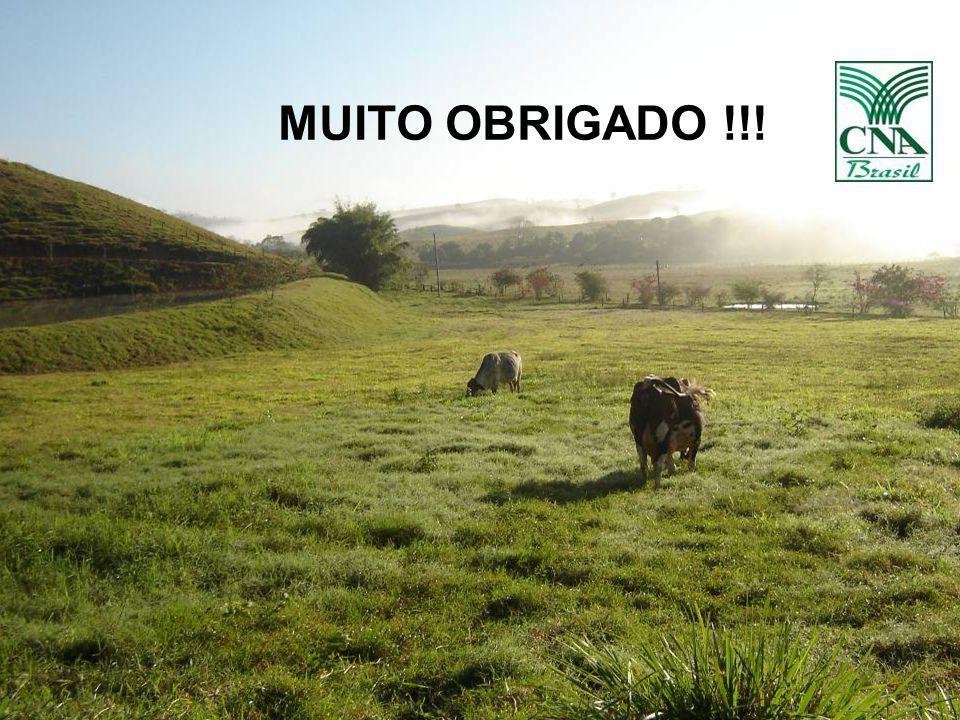 MUITO OBRIGADO !!! 22