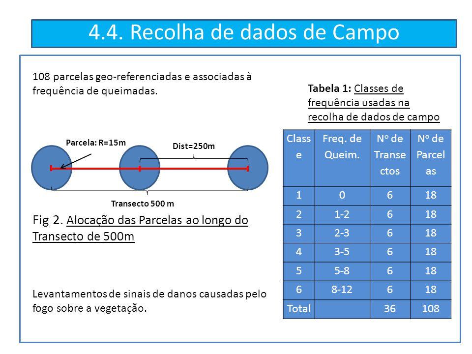 4.4. Recolha de dados de Campo